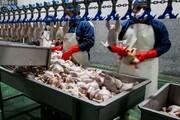 عرضه ۶۵ هزار تن گوشت مرغ در ۱۰ روز پایانی خرداد