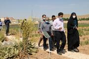 اکوتوریسم گیاهان دارویی کشور در سرای نوآوری شهرکرد ایجاد میشود