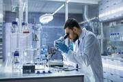 پژوهشگران دوره دکتری دولتی حقوق میگیرند
