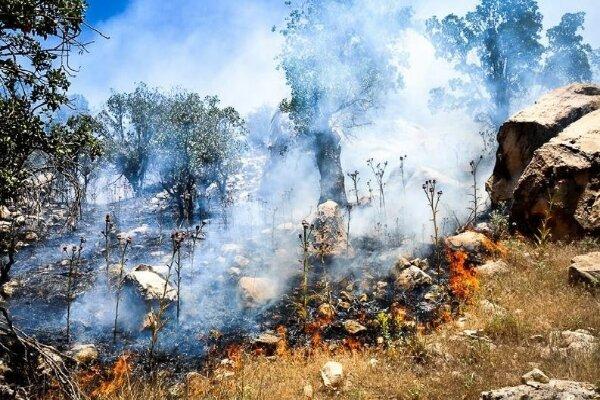 پشت پرده آتشسوزیهای سریالی زاگرس چیست؟/ منبع 40 درصد آب شیرین کشور در خطر نابودی