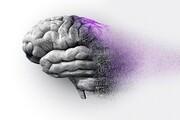 کشف روش متوقفکردن آلزایمر