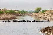 نمک اغتشاشگران بر زخم مردم خوزستان + فیلم