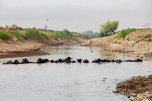 گزارشی از وضعیت کم آبی مردم روستاهای خوزستان+ فیلم