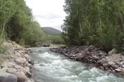 گزارشی از تغییر رنگ رودخانه چالوس + فیلم