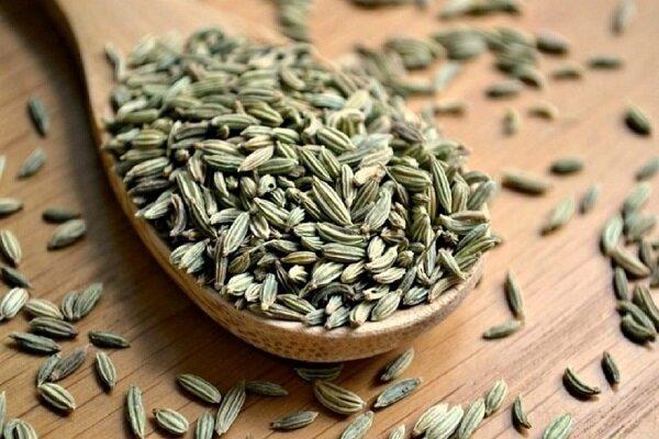 تاثیر شگفت انگیز گیاه رازیانه در درمان عفونت کرونا