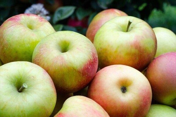 لاغری / رژیم غذایی سیب برای کاهش وزن