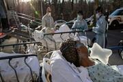 آخرین آمار کرونا در جهان / شمار مبتلایان از ۲۴۳ میلیون نفر فراتر رفت