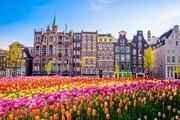 بورسیه تحصیلی/ هرآنچه باید در مورد تحصیل در هلند بدانید