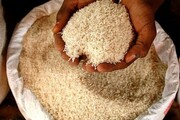 لاغری / کالری برنج را چطور کم کنیم؟