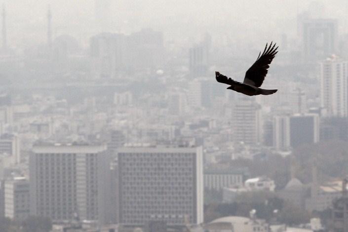 آلودگی هوا چالش بزرگ مردم و مسئولان