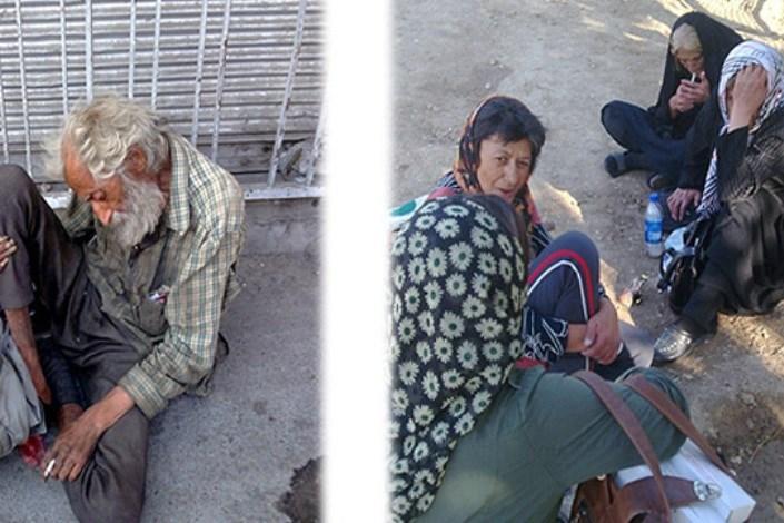 انتقاد نایب رییس انجمن حمایت از حقوق کودک از وضعیت موجود در منطقه شوش و هرندی تهران