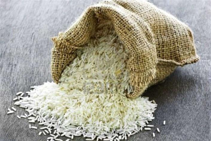افزایش ۲۰ درصدی تولید برنج/ دلالان عامل اصلی گرانی