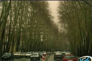 شروع اجرای «خیابان کامل» در مناطق شهرداری تهران