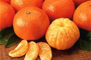 آشنایی با خواص نارنگی؛ از کاهش وزن تا پیشگیری از سرطان