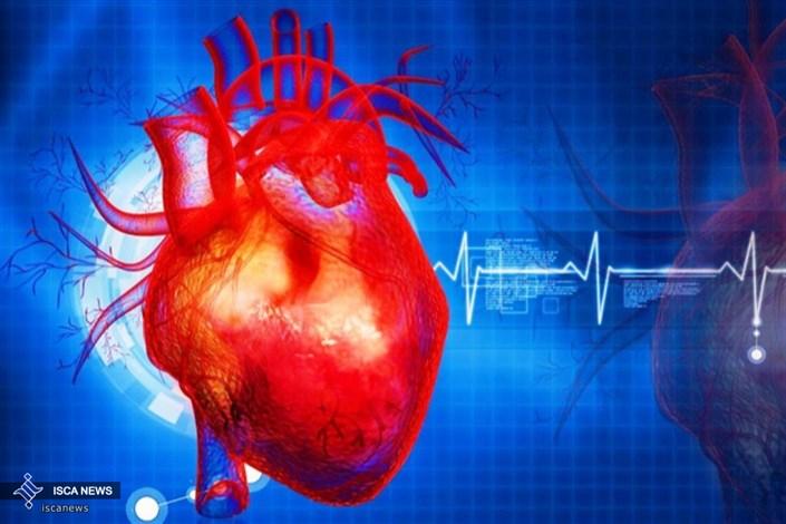 قلب، عاملی برای پیری مغز