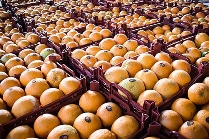 کشف ۱۳ تن پرتقال رنگ شده با مواد غیر بهداشتی