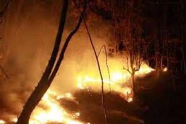 آتش سوزی در حوالی باغ پرندگان تهران