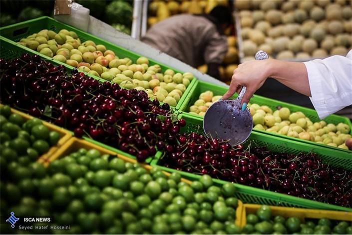 راه اندازی میادین میوه و تره بار در 31 استان با استفاده از تجربه تهران