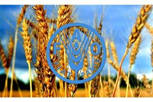دانش متخصصان ایرانی در زمینه بهرهوری آب کشاورزی ارتقا می یابد