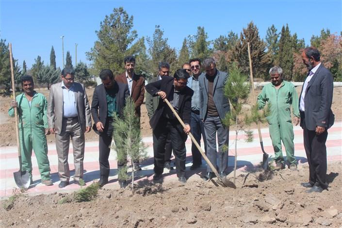 کاشت 2000 اصله نهال به مناسبت هفته منابع طبیعی در واحد بافت