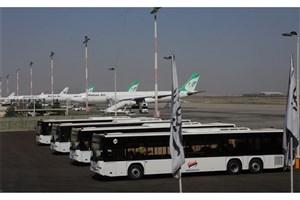 ماجرای رهاسازی دام های زنده در فرودگاه امام(ره) چه بود؟