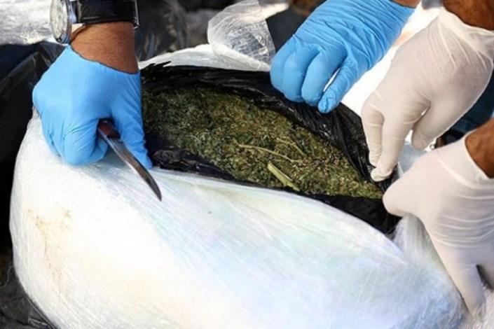 کشف 17.6 تن مواد مخدر با همکاری چین و 5 کشور همسایه