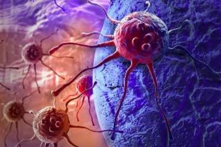 سمپوزیوم سرطان و سلول های بنیادی برگزار می شود