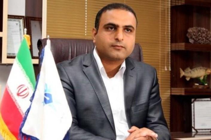 باقری: مراکز رشد دانشگاه آزاد اسلامی، نقطه امیدی در جهت توسعه کارآفرینی کشور است