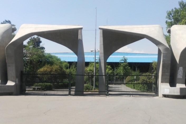 معاون بینالملل دانشگاه تهران منصوب شد