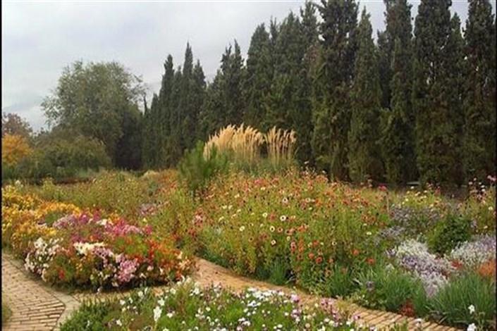گونههای قابل انقراض در باغهای گیاهشناسی حفظ می شوند