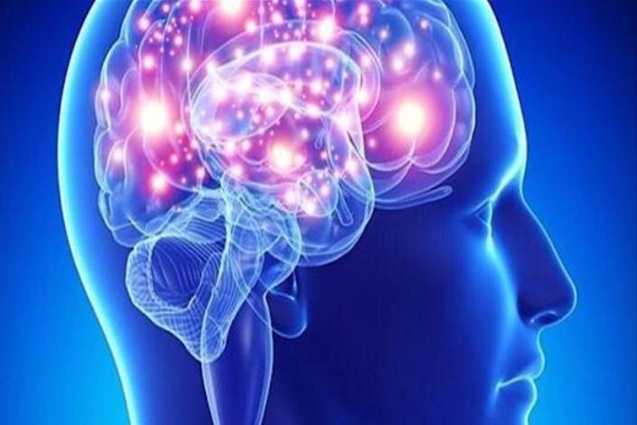 سیستم پیشرفته تحریک عمقی مغز با اجرای یک پروژه lملی طراحی میشود