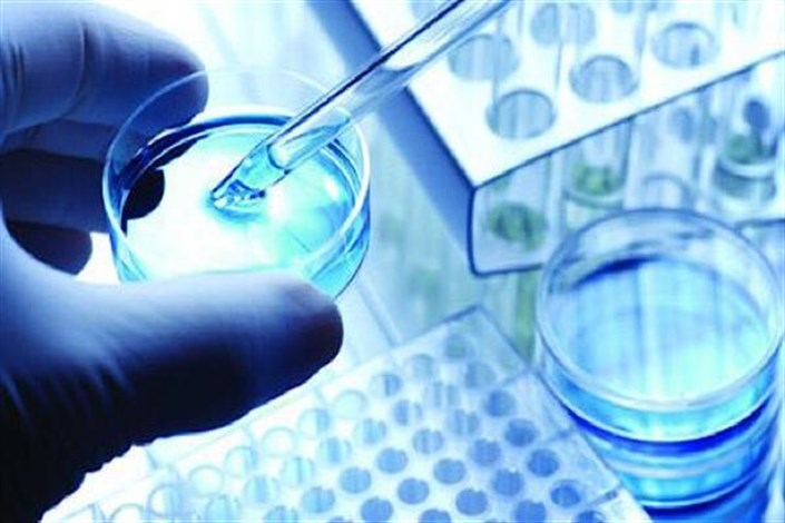 استفاده از ایمنی درمانی و سلول بنیادی برای لنفومای مقاوم به درمان