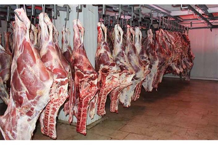 تولید گوشت قرمز به ٦٨ هزارتن رسید