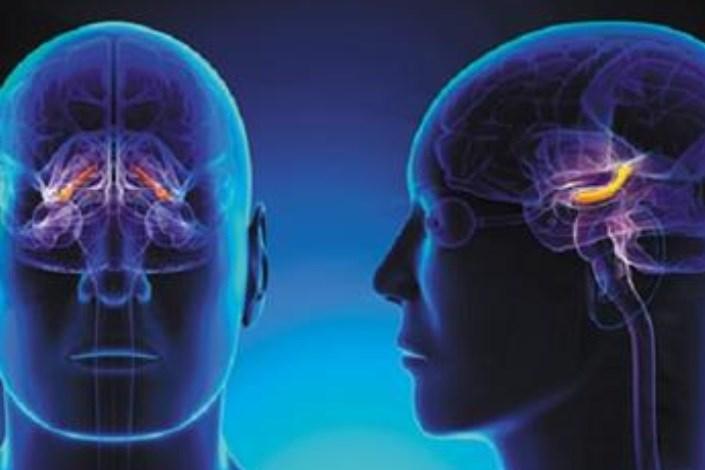 استرس مزمن منجر به آسیب مغزی می شود