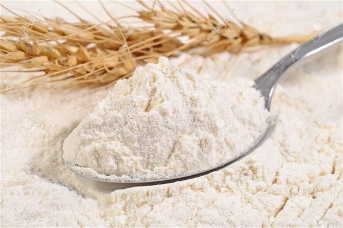 هر ایرانی چقدر نان میخورد؟/ نمایشگاه آرد و نان افتتاح شد