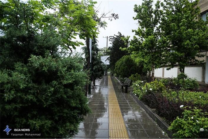 بارش باران درجاده های 5 استان / ترافیک در آزادراه کرج و قم