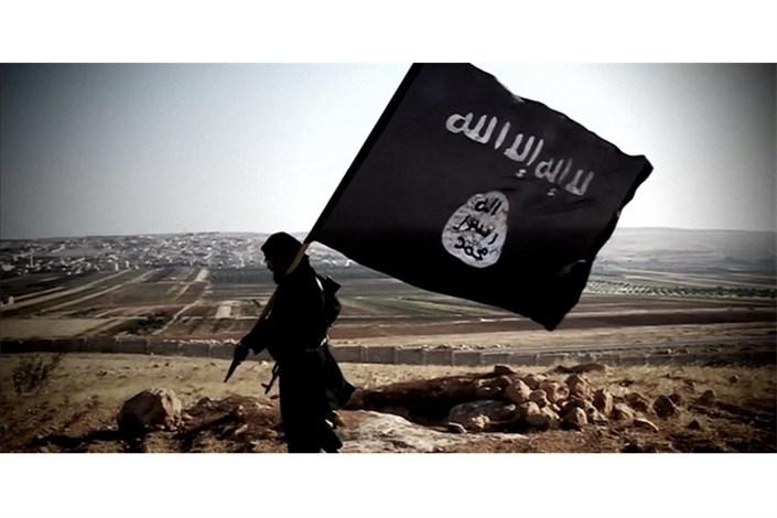 عراق درباره احتمال احیای داعش در گیر و دار کرونا هشدار داد