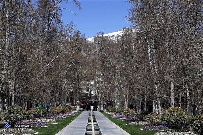 تهرانی ها نفس عمیق بکشید/هوا پاک است