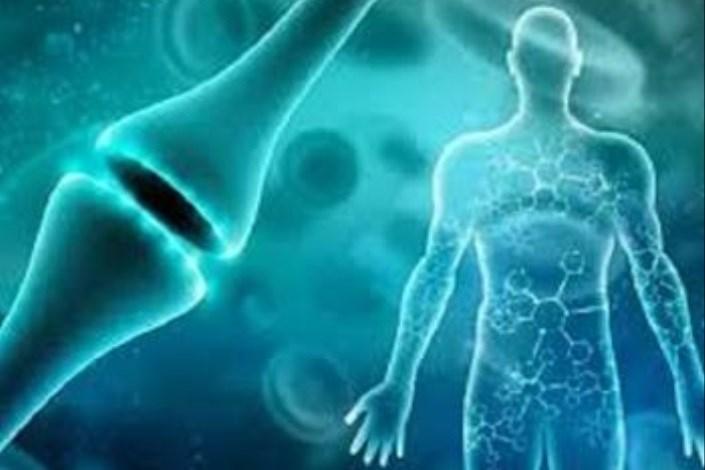 استفاده از سلول های بنیادی برای مدیریت درد