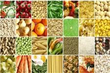گزارش بانک مرکزی از قیمت موادغذایی؛ تخم مرغ ۲۰ درصد گران شد/ قیمت گوشت ۱۳ درصد بالا رفت