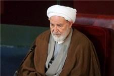 آیت الله یزدی:  رئیس جمهوری نیجریه زمینه آزادی شیخ ابراهیم زکزاکی را فراهم کند