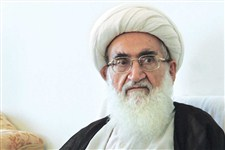 آیتالله نوری همدانی: راه ملت ایران تا نابودی قطعی اسرائیل ادامه دارد