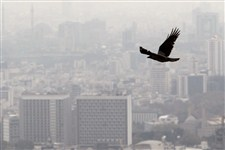 هوای تهران از شرایط سالم خارج شد/ هشدار به گروه های حساس جامعه