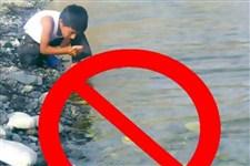 دلیل شیوع وبا در کشور، آلودگی سبزیجات و صیفیجات است