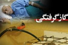 مرگ 33  نفربراثرگاز گرفتگی در 4 ماه اول سال