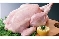 قیمت مرغ ایرانی از برزیلی ارزانتر می شود؟