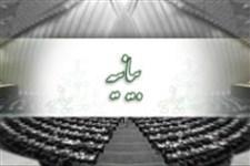 حمایت 235 نماینده مجلس از فرامین مقام معظم رهبری در نامگذاری سال ۹۶