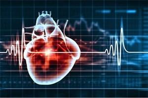 موفقیت محققان ایرانی در ساخت پچهای قلبی برای ترمیم عضله قلب مبتلایان سکته