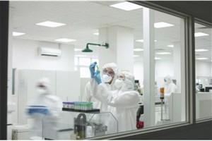 ساخت آزمایشگاهی نانوفیلم اکسید روی به کمک دستگاه پلاسمای کانونی در دانشگاه آزاد اسلامی