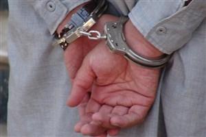 دستگیری 29 قاچاقچی انسان در آمریکا